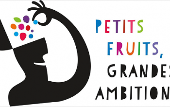 Petits fruits, grandes ambitions… et innovation!